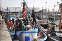Pescadores artesanales en acción